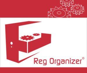 logo reg organizer